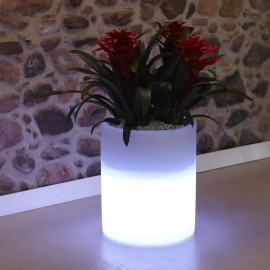 LED LIGHTED VASE-ROSE