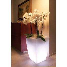 VASO LUMINOSO A LED - JASMIN