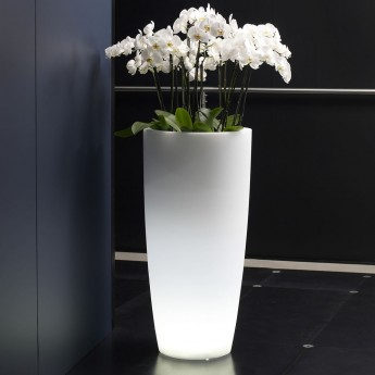 LED LIGHTED VASE-CYPRESS