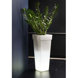 LED LIGHTED VASE-OAK